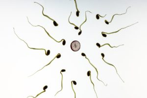 Infertility Causes and Symptoms